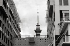 Auckland nieba wierza wierzchołek - Nowa Zelandia Fotografia Stock