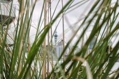 Auckland, Nieuw Zeeland, 12 augustus 2010, mening op Hemeltoren van is Stock Afbeelding