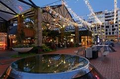 Auckland - Nova Zelândia Fotografia de Stock Royalty Free