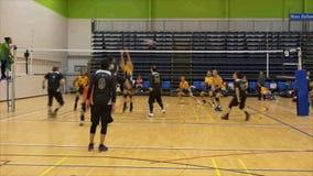Auckland Nova Zelândia 21 04 2017 disparou de jogadores de voleibol acima de 35 anos de recolhimento velho no jogo 2017 do mestre filme