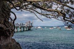 AUCKLAND NOWA ZELANDIA, KWIECIEŃ, - 07, 2018: Widzowie i konkurenci przy Murrays zatoki nabrzeża Birdman festiwalem zdjęcie royalty free