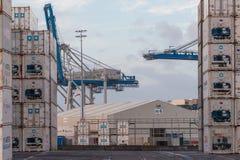 AUCKLAND, NUOVA ZELANDA - 2 aprile 2012: Gru e pila di contenitori al porto marittimo di Auckland Fotografie Stock Libere da Diritti