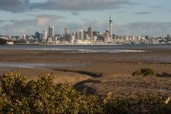 Auckland panorama Arkivbilder