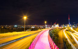 Auckland-Radweg Stockfoto