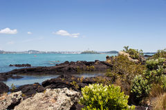 Auckland from Rangitoto Island Royalty Free Stock Images