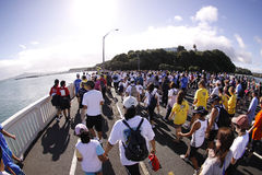Auckland round the bays fun run Royalty Free Stock Image