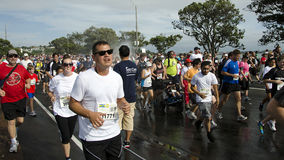 Auckland Round The Bays Fun Run Royalty Free Stock Photos