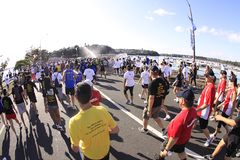 Auckland Run Walk Round the Bays. Participants of Auckland Round the Bays, one of the world's largest fun walk and run with an estimated 70,000 entrants, in Royalty Free Stock Images