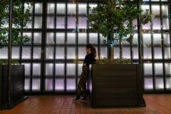 Auckland-` s Britomart Bereich Stockfotografie