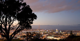 Auckland Skyline. Auckland City skyline at sunset, hilltop view, new zealand Royalty Free Stock Photos