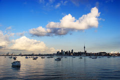 Auckland skyline with blue sky Royalty Free Stock Images