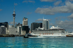 Auckland Skyline & Cruise Ship Royalty Free Stock Images