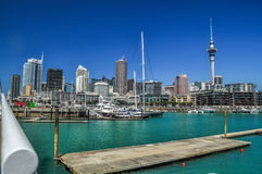 Auckland skyline. The Auckland skyline from the harbour Royalty Free Stock Photos