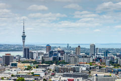 Auckland Skyline from Mount Eden. Auckland skyline looking from the top of Mount Eden Stock Photography