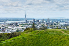 Auckland skyline from Mount Eden. Auckland skyline looking from the top of Mount Eden Royalty Free Stock Photo
