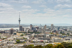 Auckland Skyline from Mount Eden Stock Images