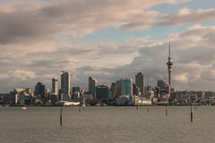 Auckland skyline at sunset Royalty Free Stock Photo