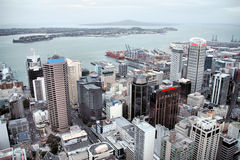 Auckland skyscrapers Royalty Free Stock Photo