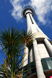 Auckland Skytower 2 Stock Photo