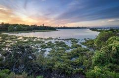 Auckland solnedgång Royaltyfri Bild