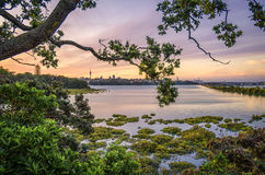 Auckland-Sonnenuntergang Stockfoto