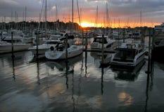 Auckland stad i Nya Zeeland Royaltyfria Bilder