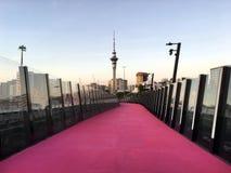 Auckland stadshorisont från Nelson Street Cycleway Royaltyfri Fotografi