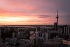 Auckland-Stadt bei Sonnenuntergang lizenzfreie stockbilder
