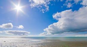 auckland strandhamn Royaltyfria Foton