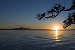 Auckland Sunrise. Auckland scene from Tamaki Drive at sunrise royalty free stock photography