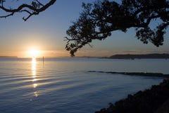 Auckland Sunrise. Sunrise over the Harbour Stock Photos