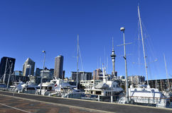 Auckland Viaduct Harbor Basin - New Zealand Royalty Free Stock Image