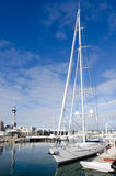 Auckland Viaduct Harbor Basin Royalty Free Stock Photos