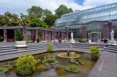 Auckland vinterträdgårdar i Auckland Nya Zeeland Royaltyfria Foton