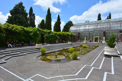 Auckland vinterträdgårdar i Auckland Nya Zeeland Arkivbild