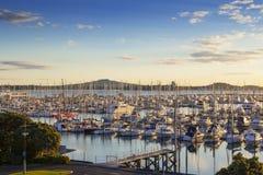 Auckland Westhaven Marina and Mount Rangitoto. Westhaven Marina, Auckland, and the volcano Rangitoto, at sunrise Stock Photos