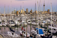 Auckland yachts Royalty Free Stock Photo