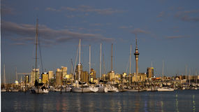Auckland yachts Royalty Free Stock Image