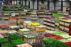 Auction floor at Aalsmeer's FloraHolland flower auction Stock Photos