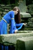 Aucune eau pour les elfes de forêt Photographie stock libre de droits