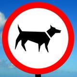 Aucune marche de chien permise Image stock