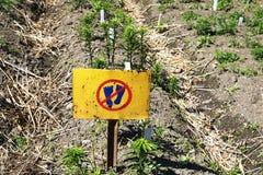 Aucune marche sur des fleurs avertissant le connexion le jardin Empreintes de pas dedans Photographie stock libre de droits