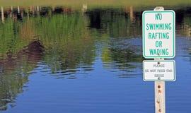 Aucune natation transportant par radeau pataugeant les oies de alimentation signe Image libre de droits