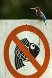 Aucune pêche Photos stock