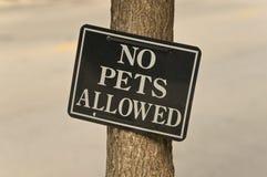 Aucuns animaux familiers permis photographie stock libre de droits