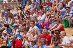 Audiência ensolarada Fotografia de Stock