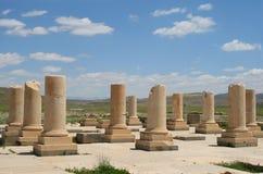 A audiência Salão do palácio de Pasargadae, Irã Imagem de Stock