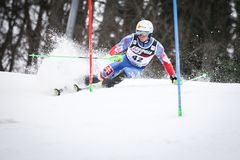 Audi FIS World Cup Mens Slalom. ZAGREB, CROATIA - JANUARY 4, 2018 : Zampa Adam of Svk competes during the Audi FIS Alpine Ski World Cup Mens Slalom, Snow Queen stock photography