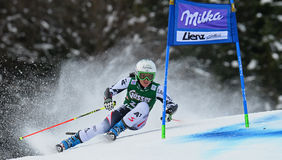 Audi FIS World Cup - Women's Giant Slalom Royalty Free Stock Photo