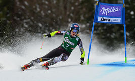 Audi FIS World Cup - Women's Giant Slalom Royalty Free Stock Photo
